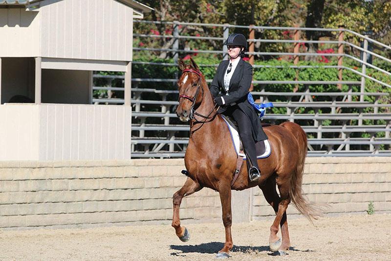Equestrian Santa Clarita Valley International Charter School