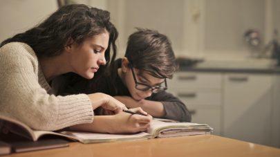 SCVi English Learner Updates